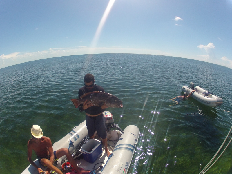 Paul and the guys returning with a huge grouper he speared!